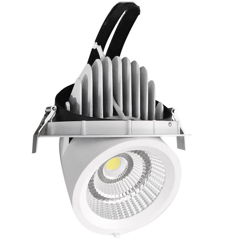 Downlight Led PRICKLUX TUBE 38W