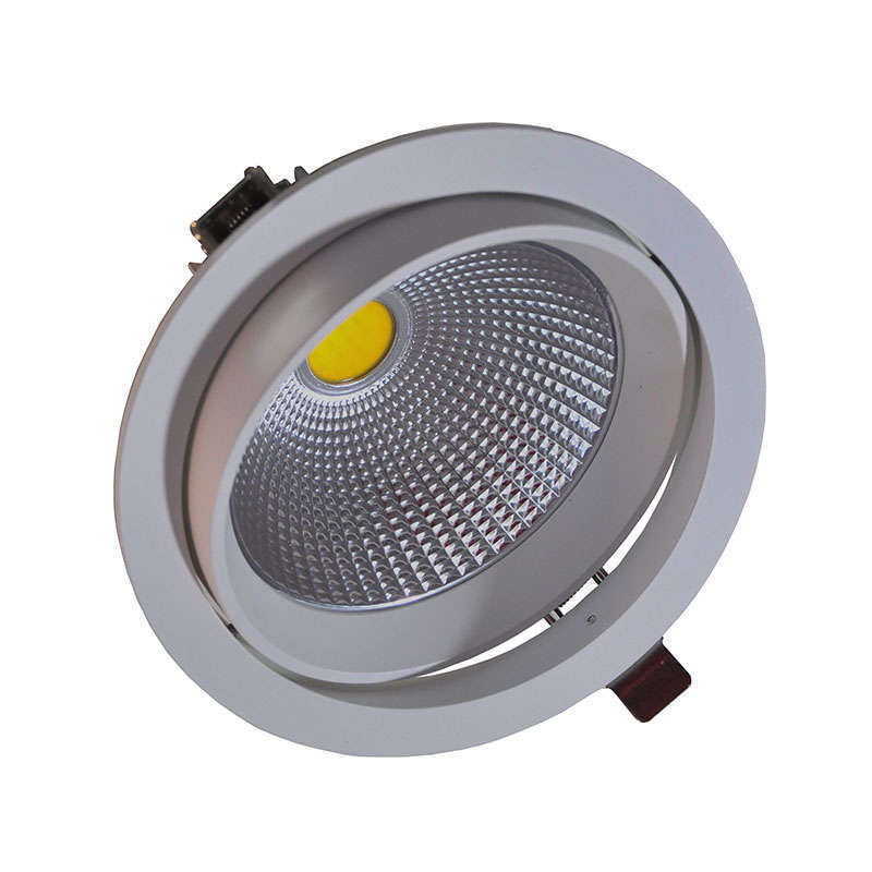 Round COB adjustable 22W