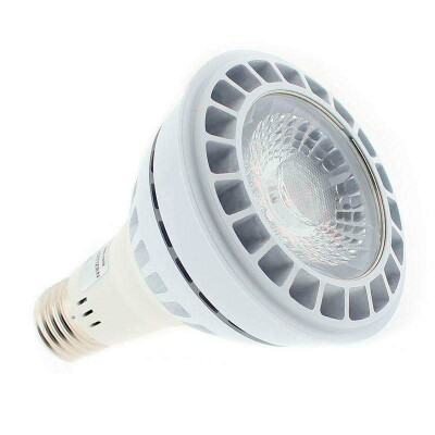 Lámpara LED CITIZEN PAR30, E27, 21W, Blanco frío