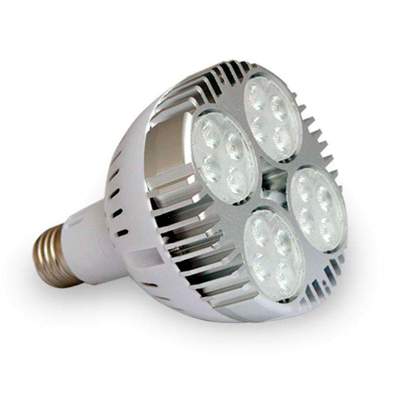 Lámpara LED PAR30 E27, 35W