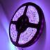 Tira LED UV Ultravioleta SMD5050, DC24V, 5m (120 Led/m) - IP20
