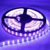 Fita LED UV Ultravioleta SMD5050, DC24V, 5m (120 Led/m) - IP67