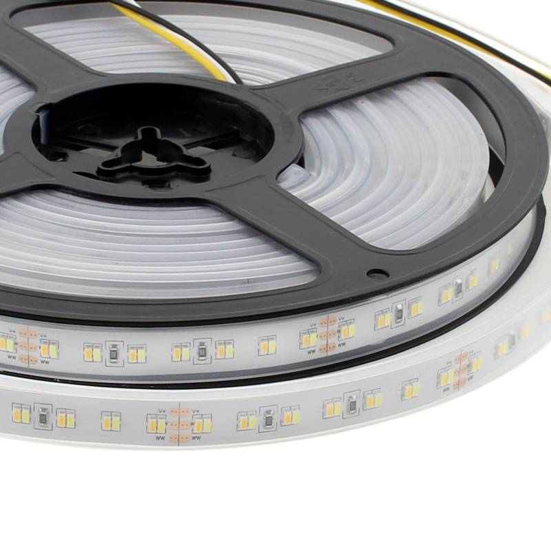 Tira LED Blanco Dual SMD3014, DC24V, 5m (224 Led/m) - IP67