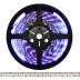 Tira LED UV Ultravioleta SMD3528, DC24V, 5m (240 Led/m) - IP20