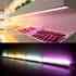 Tubo LED Profresh, 9W, 56cm, Carnes