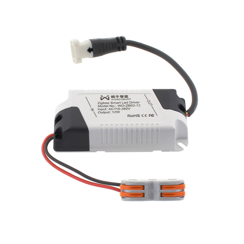 Zigbee Smart Controlador, 2CH, DC 0-38, 0,4A, 5-12W