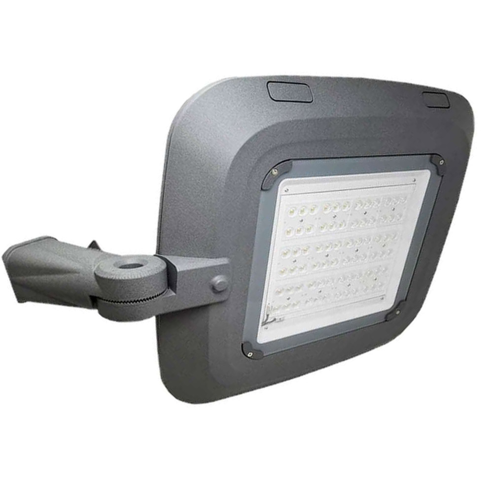 Farola LED 10-100W SIENA Philips Driver programable